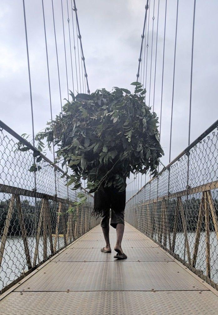 Photo of Hanging Bridge By Sylvon Lopes