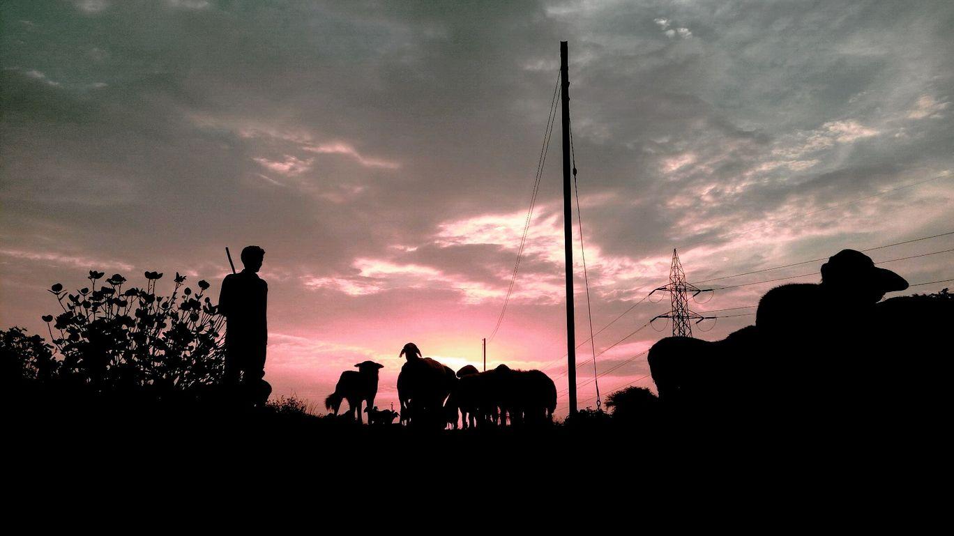 Photo of Loni Kalbhor By Hemant Jain