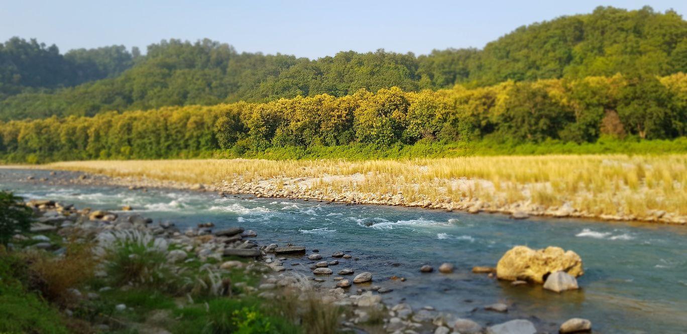 Photo of Kosi River By Sasha Singh