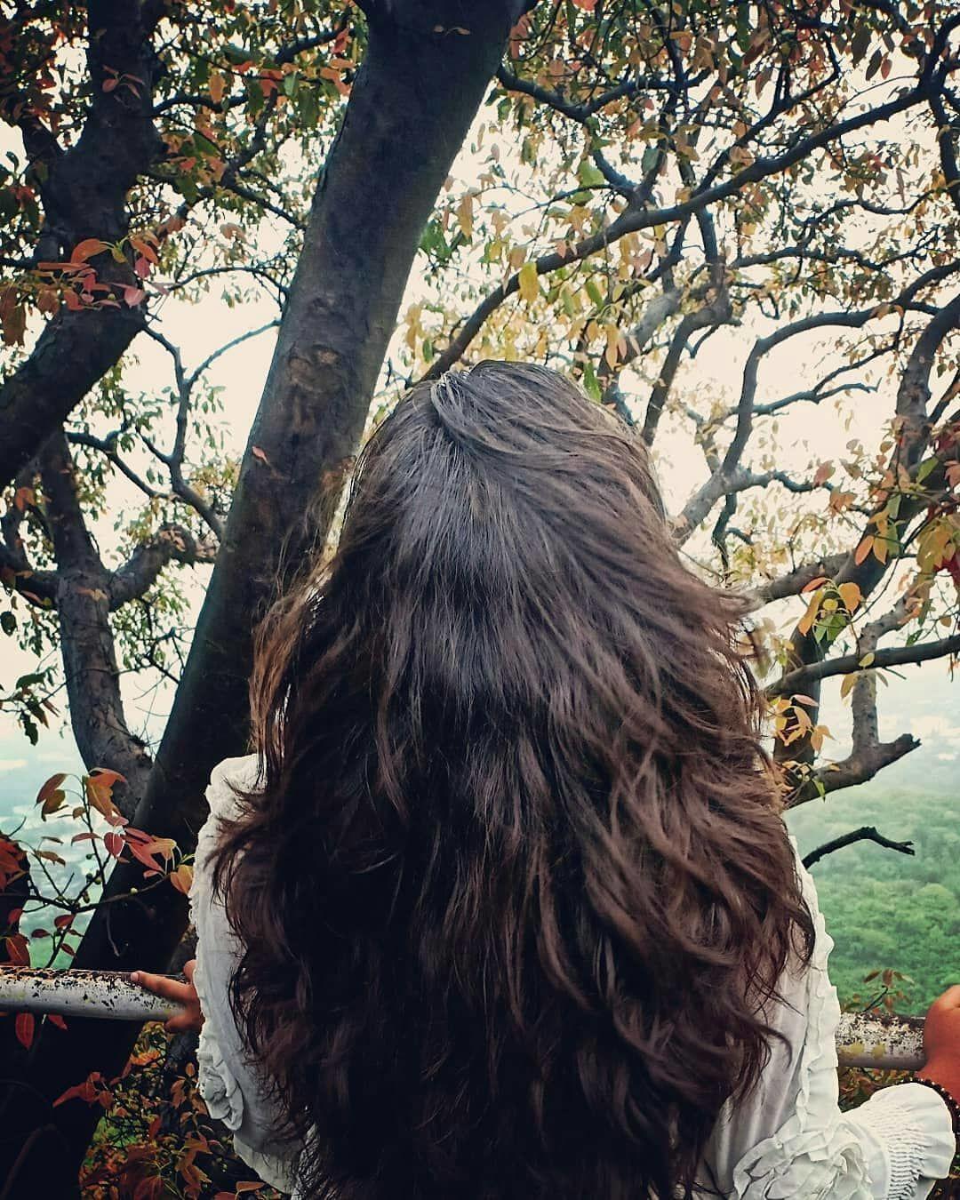 Photo of Parnera By Niki