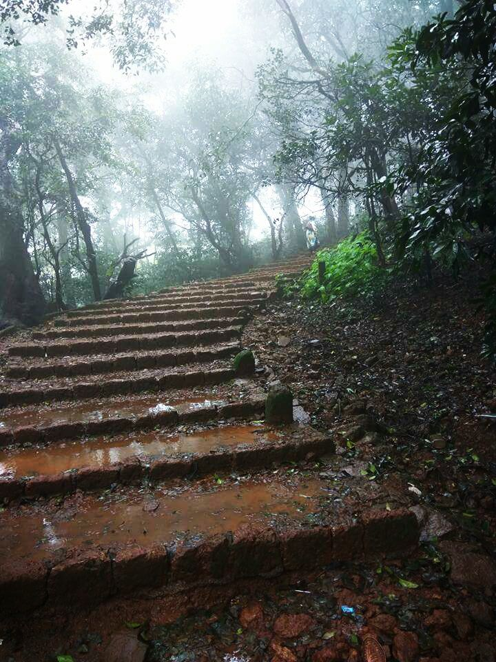 Photo of Matheran Hill Station By Divya Rani Singh
