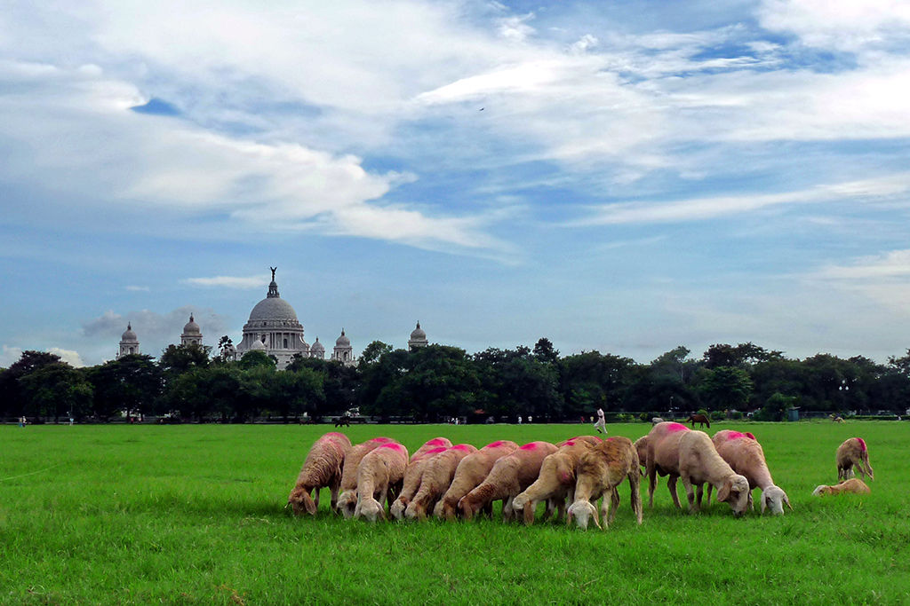 Photo of Kolkata By Sourangshu Gupta