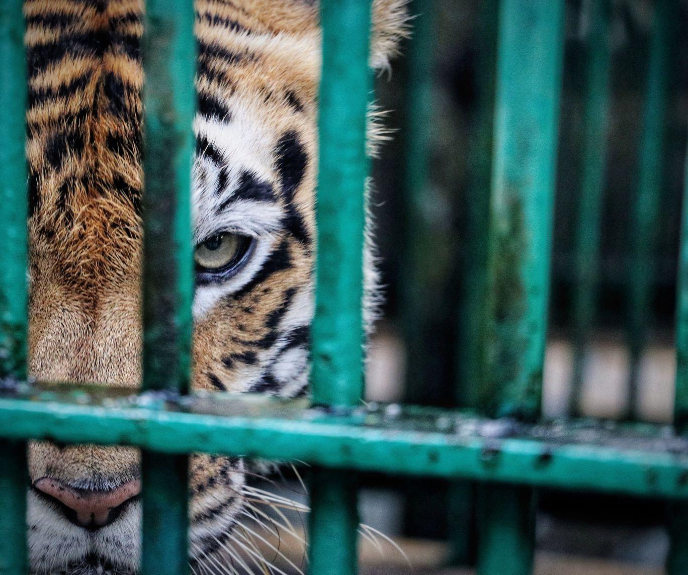 Photo of Trivandrum By Mahi Mahi