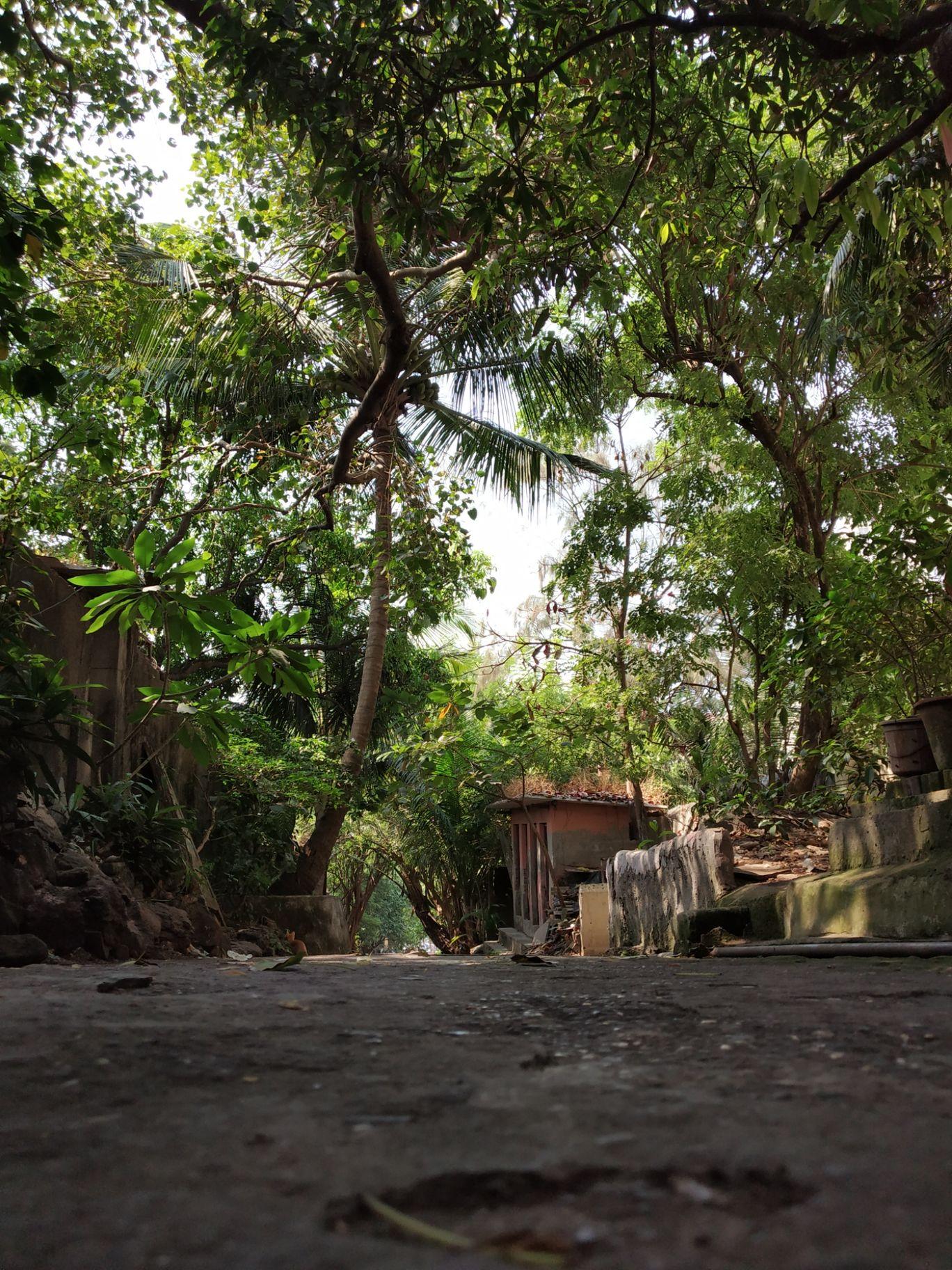 Photo of Mount Mary By Surbhi Madavi