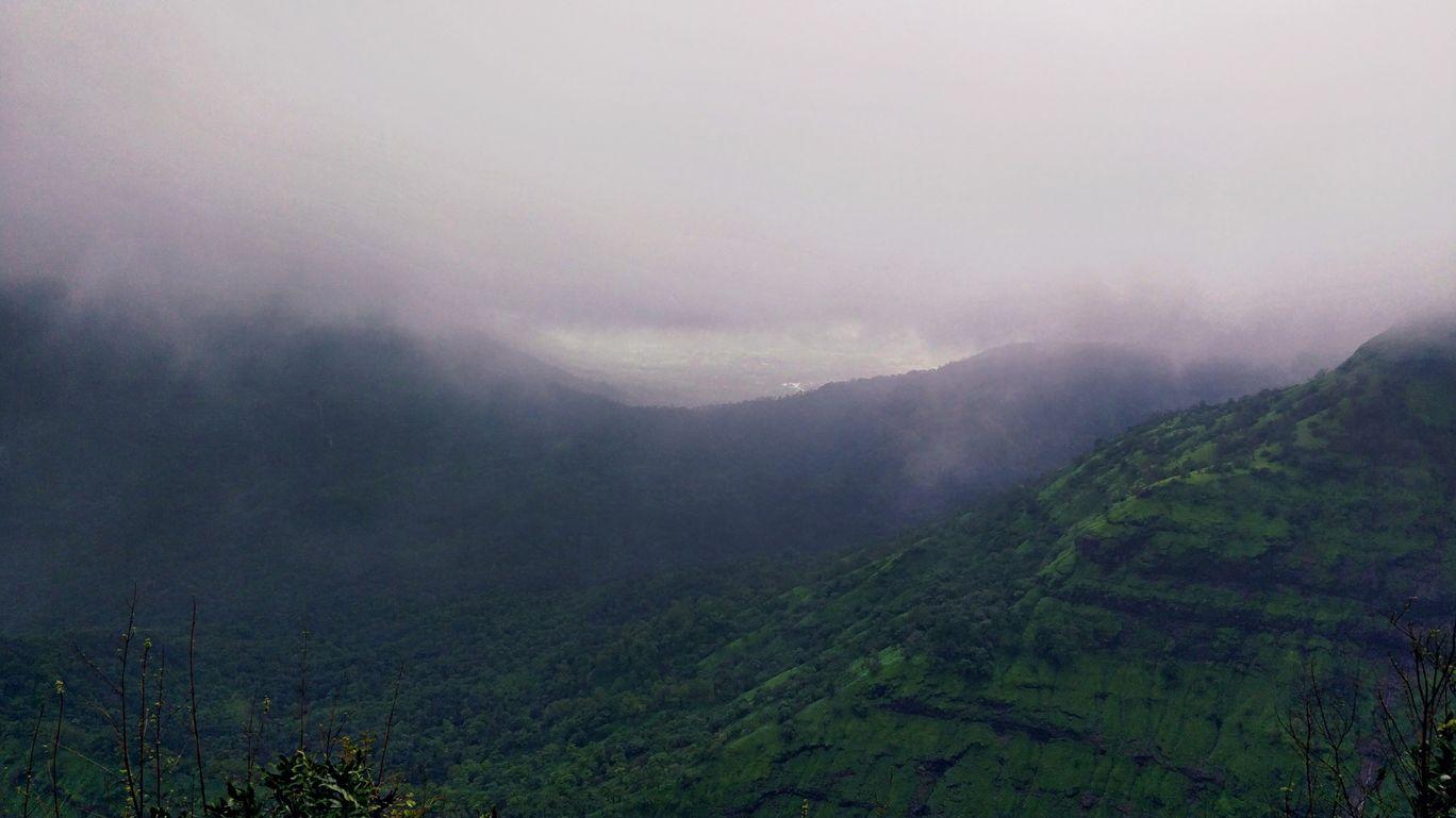 Photo of Amidst the fog ! By Akrati Sharma