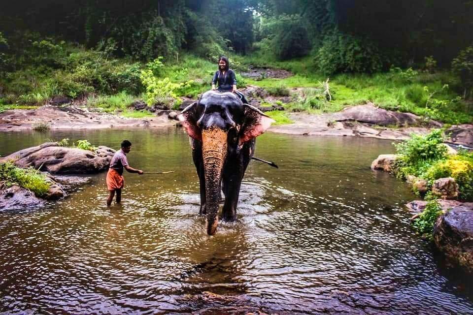 Photo of Kerala By Tanushriya Adhikary