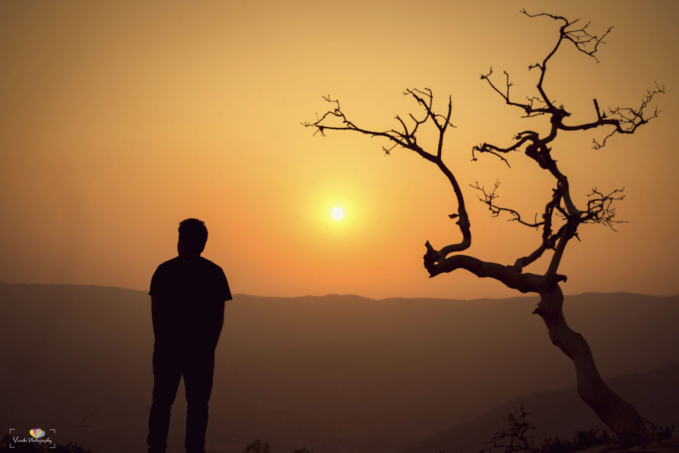Photo of Incredible rajasthan By vasuki sn