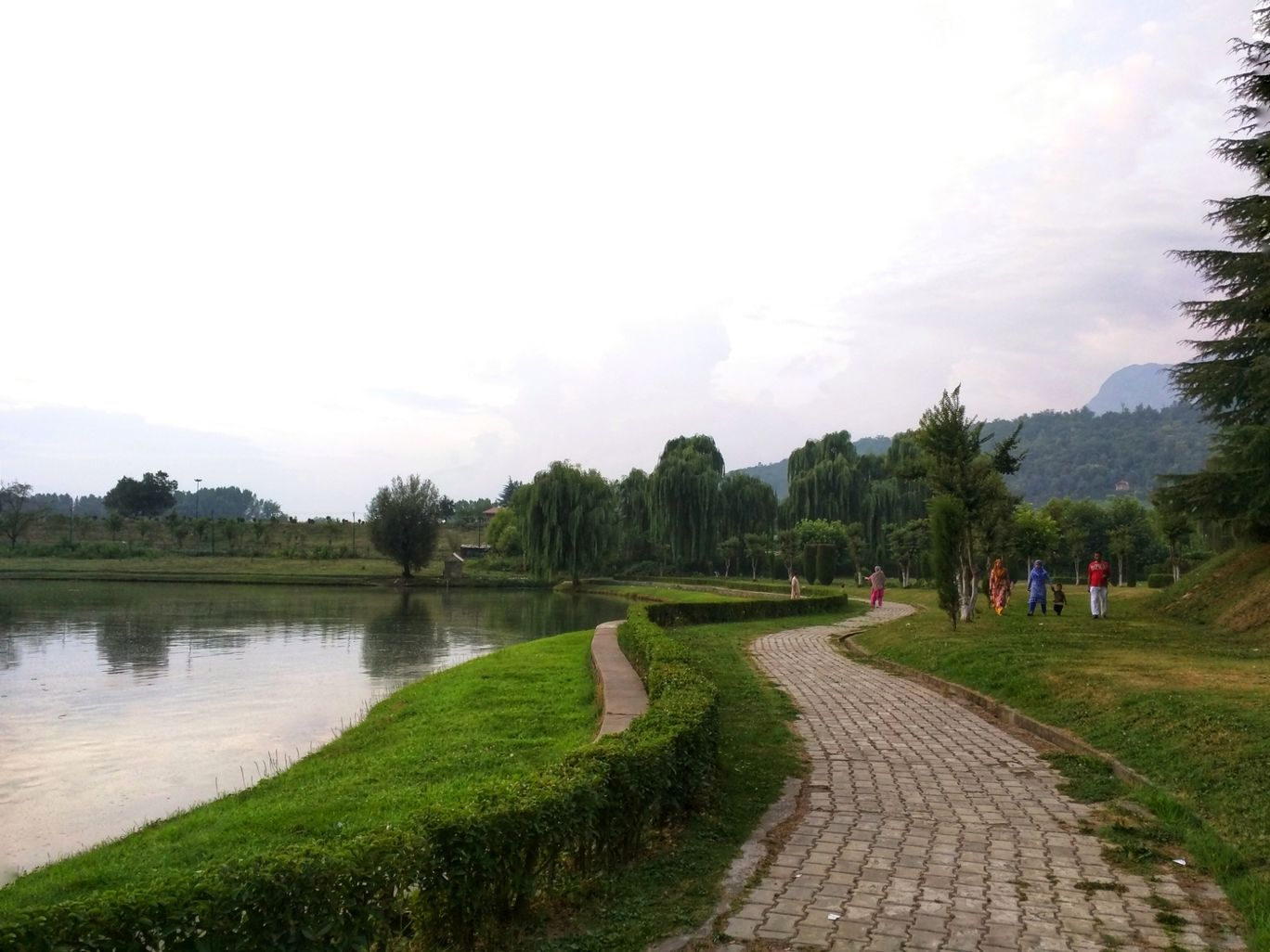 Photo of Botanical Garden By Rashmi Badami