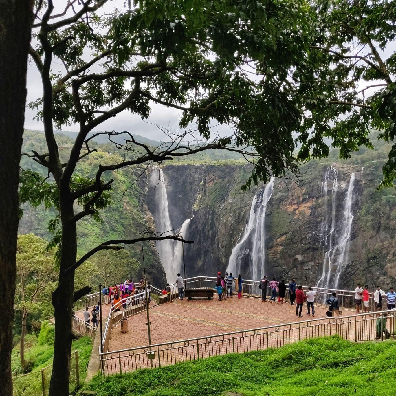 Photo of Jog Falls By Rashmi Badami