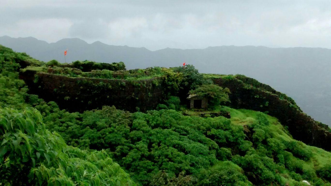 Photo of Torna Fort By Monika Swarna
