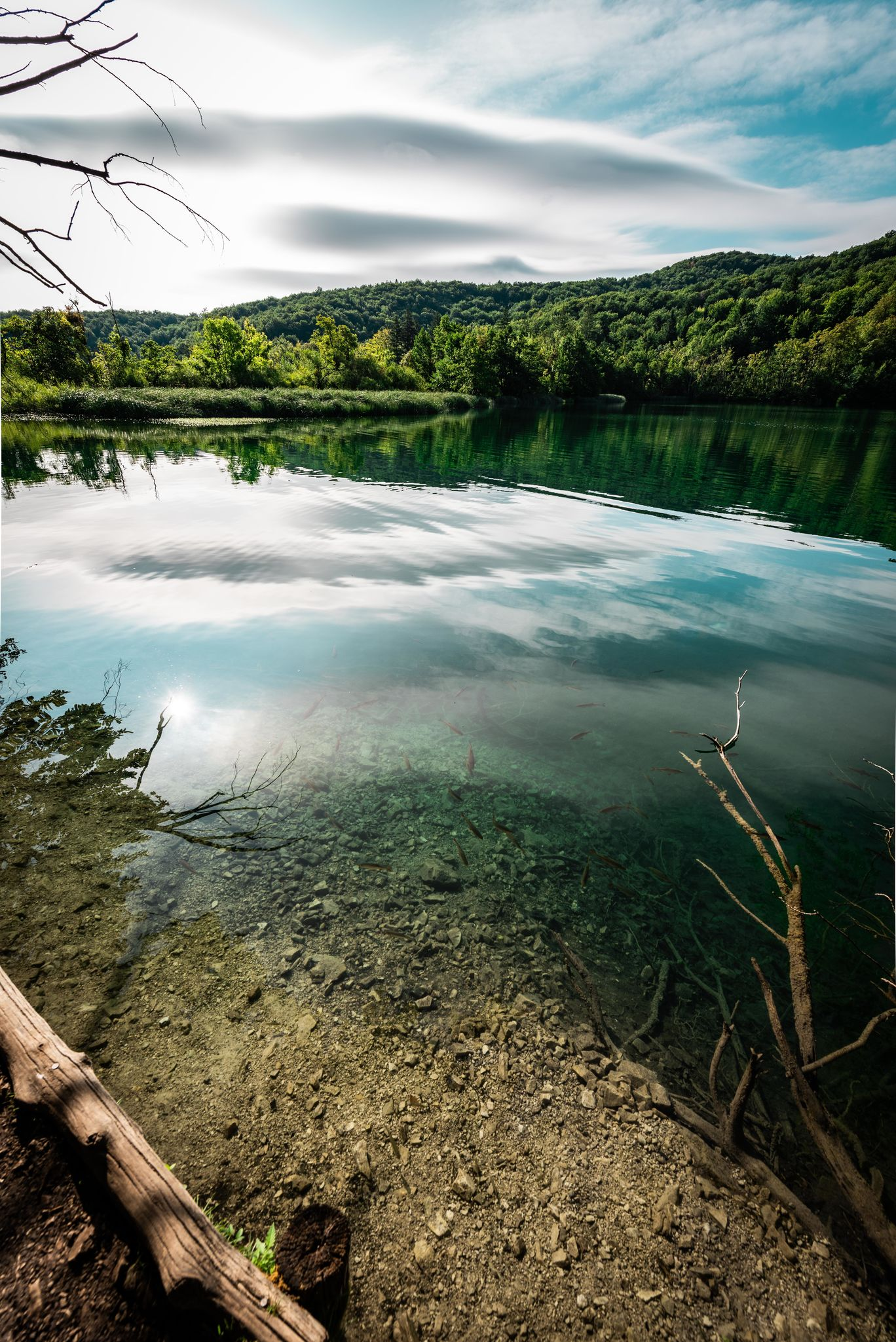 Photo of Plitvice Lakes National Park By Ishita Dharnidharka
