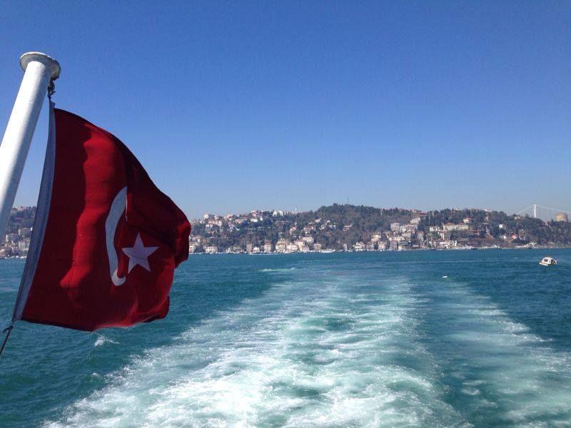 Photo of Lurking in Turkey By Sandhya Kannan