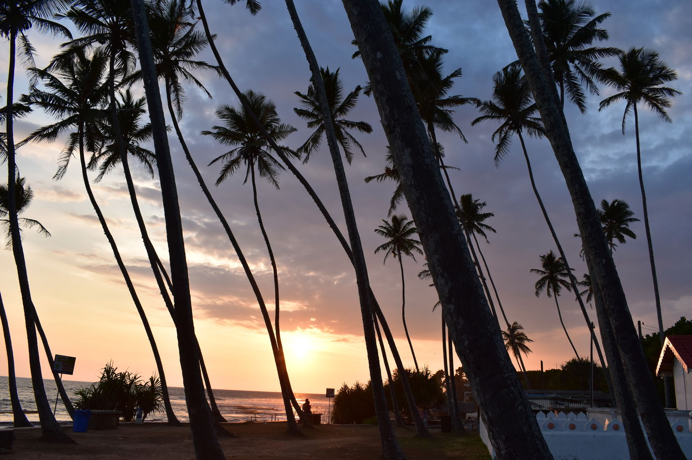 Photo of Sri Lanka By Amitha Prasad