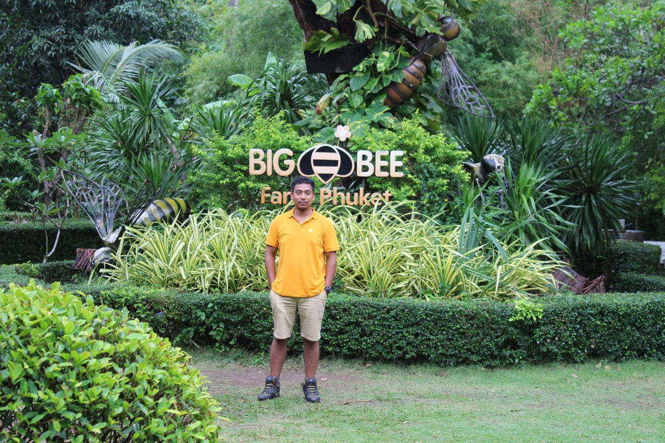 Photo of Big Bee; phuket By NIRUPAM BORGOHAIN