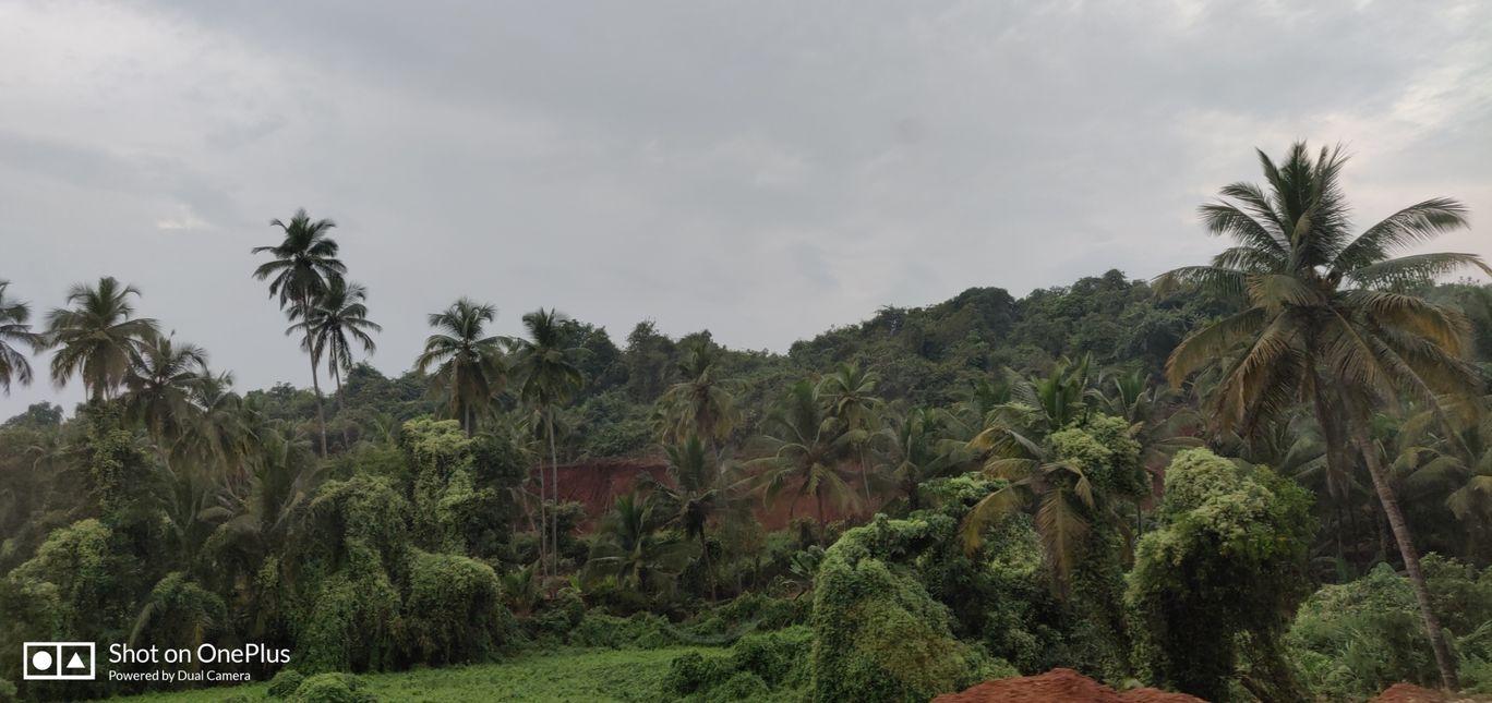 Photo of Goa By jagruti gaikwad