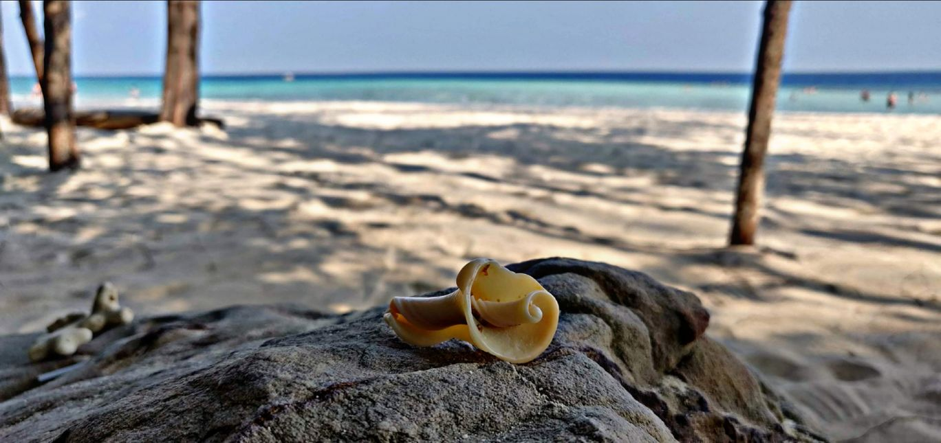 Photo of Phi Phi Islands By jagruti gaikwad
