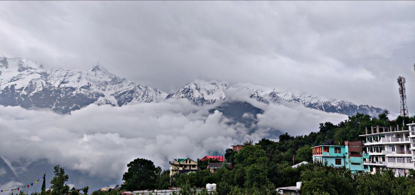 Photo of Kalpa By jagruti gaikwad