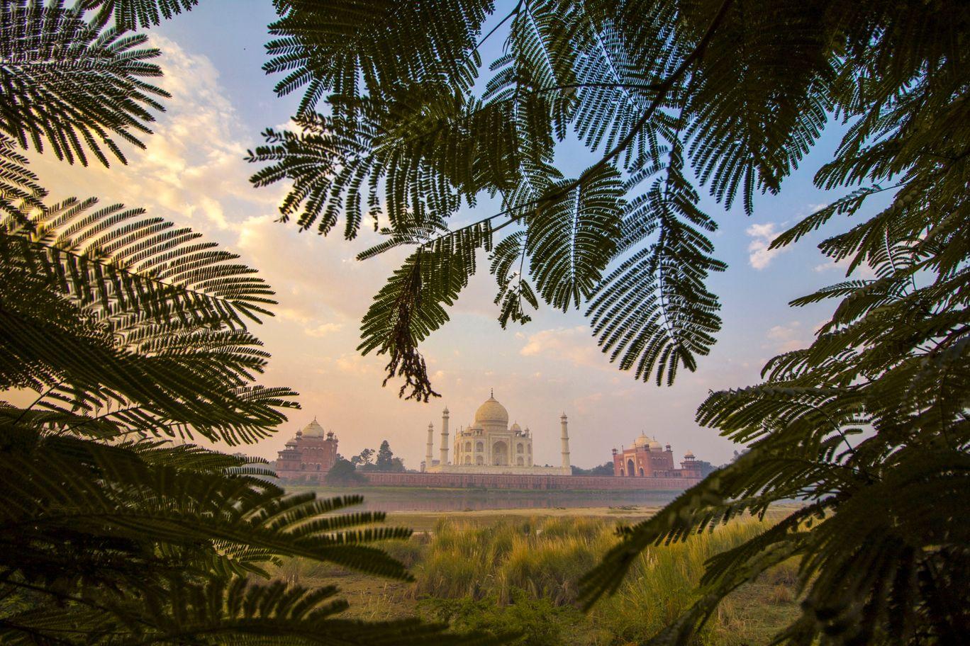 Photo of Taj Mahal By Harshit Chawla