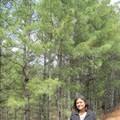 Shilpi A Bhabhra Travel Blogger