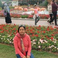 Sreedevi Jeevan Travel Blogger