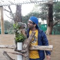 Anshuman Singh Travel Blogger
