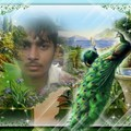 Raghvendra Singh