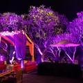 Rajdhani Wedding