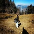 Pooja Dhanjibhai Painter Travel Blogger