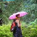 Richa Gupta Travel Blogger