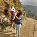Sneha Mitra Travel Blogger