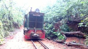 Beauty lies in the eyes of the viewer: Matheran