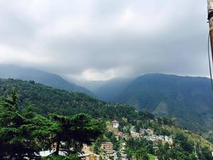 My first solo trip to McLeodganj and Triund