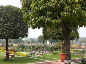 Mughal Garden (2015)