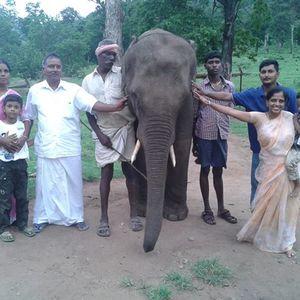 Ramesh Thy Travel Blogger