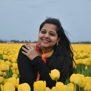 Surya Vaidyanathan Travel Blogger
