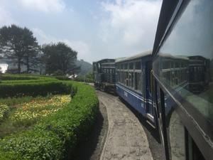 SIKKIM- A land of flower