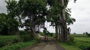 Mandu- Monsoon magic
