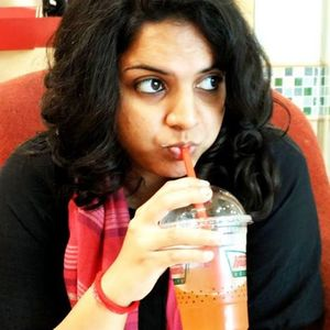 Krishna Sathish Travel Blogger