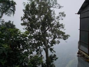 Trip to beat the heat - I (Amazing Uttarakhand)