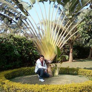 Rakesh Senapaty Travel Blogger