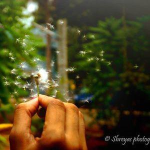 Meena Pradeep Travel Blogger