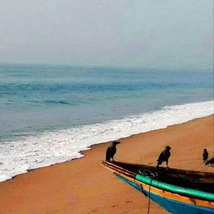 Bukun Maji Travel Blogger