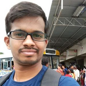 Sathish Ande Travel Blogger