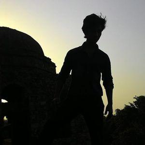 Anshul Negi Travel Blogger