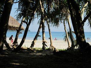 The Beautiful Backpacker Destination- Havelock Islands