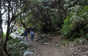 Triund: There and back again