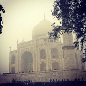 The Taj in the Foggy Winters