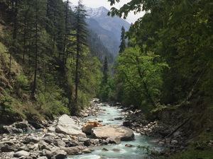 Tales from Uttarakhand