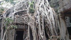 Kingdom of Cambodia - Khmer Empire of Temples - Trails and Frames