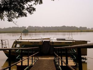 Bhitarkanika, a lesser known National Park of India